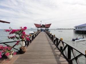 事務所前の桟橋