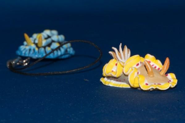 アカテンイロウミウシのマグネット
