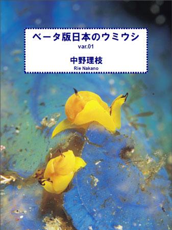 ベータ版日本のウミウシの表紙