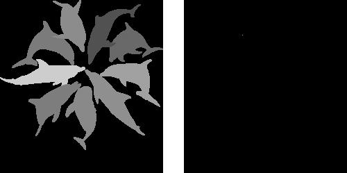 logo-1color