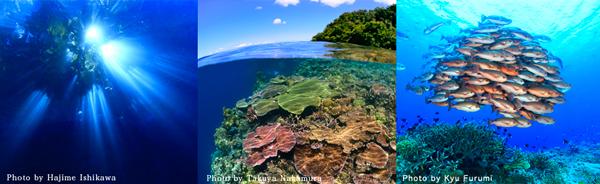 パプアニューギニア・ダイビング・ナイトイベントのバナー