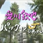 愛川欽也さんの死因