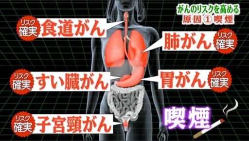 喫煙のリスク(世界一受けたい授業2015年5月2日放送)