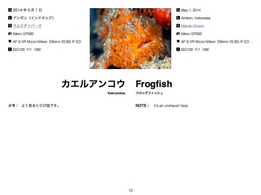 FROGFISH.JPのP.13