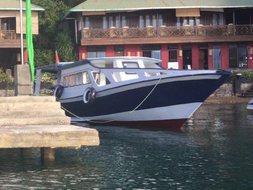 バスティアノスダイブリゾートのボート