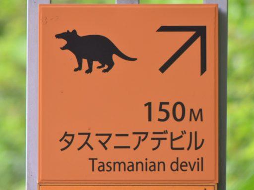 タスマニアデビルの案内看板