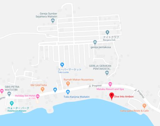 DIVE into AMBONの周辺地図