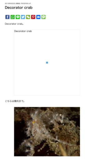 Frogfish.jpの画面例