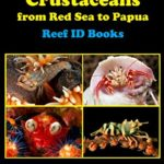 Coral Reef Crustaceans: From Red Sea to Papua
