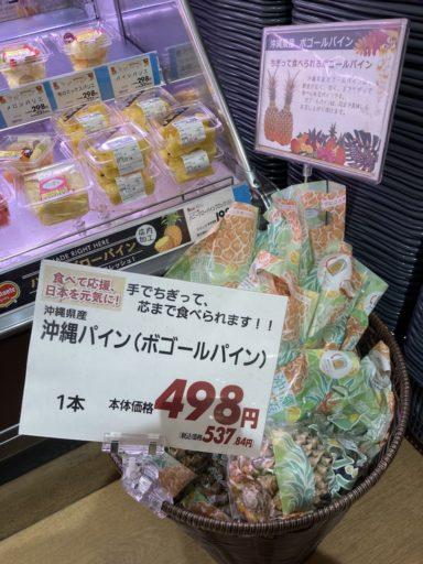 沖縄パイン(ボゴールパイン)